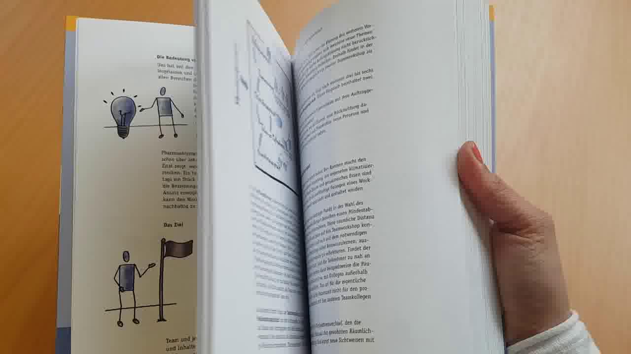 Link Blick ins Buch: Teamdynamik entwickeln